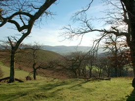 Comin Coch Common, Powys