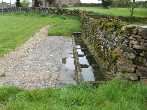 One of the stone troughs on Newbiggin Common