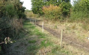 Temporary electric fencing.