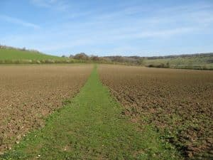 Well-maintained path at Turville, Bucks.