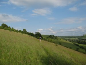 Cobstone Hill in the Chilterns AONB in Buckinghamshire