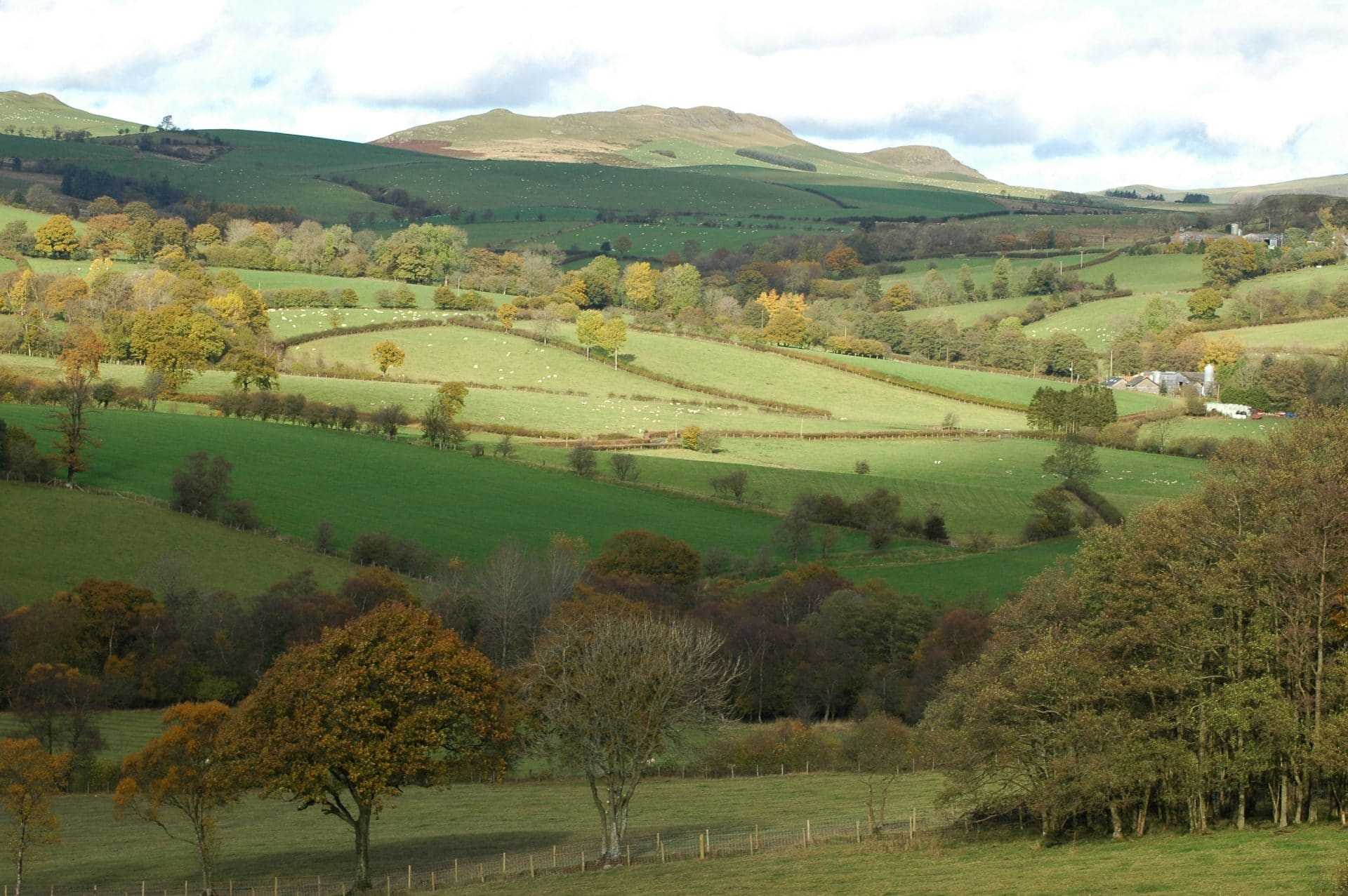 Llandegley Rocks: this view could be obliterated by the proposed seven 110-metre-high wind turbines. Photo: Diana Hulton
