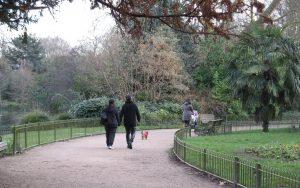 walk through garden
