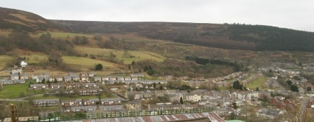 Dense woodland at Waun y Pound proposed exchange land, unsuitable for walkers and riders