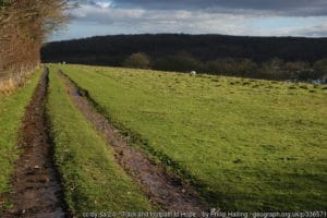 OSS Footpath to west of Hope-under-Dinmore footpath HD4