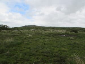 Grey Rock on the eastern side of the claimed common, with Helman Tor in the background