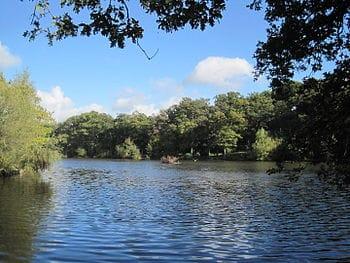 Barnet Beech_Hill_Lake