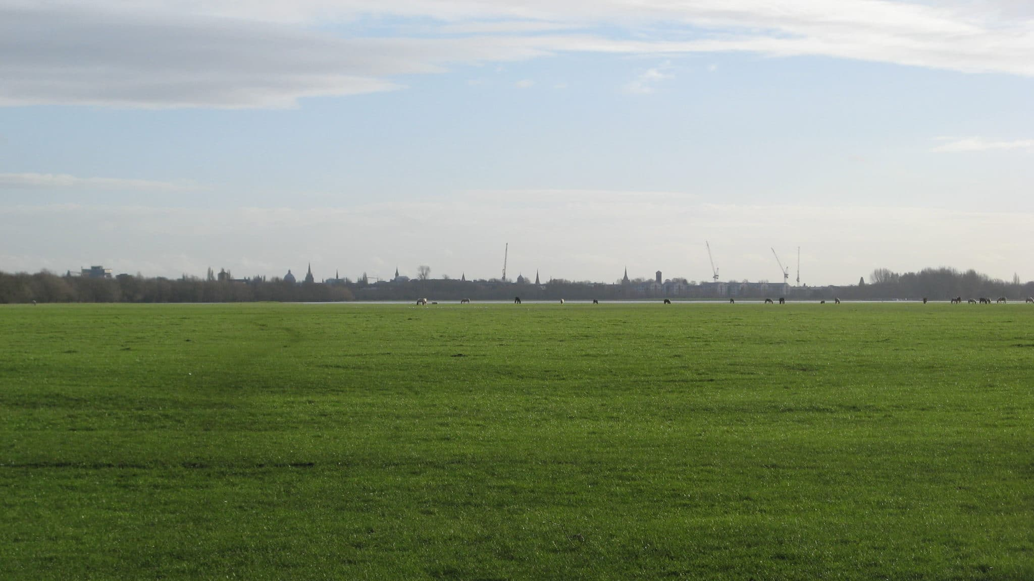 Port Meadow, Oxfordshire