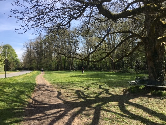 View across Chesham Bois Common, Buckinghamshire