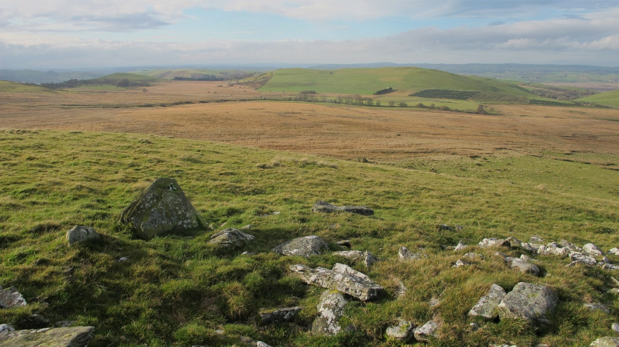 Rhos Gelli Gron common, by Peter Foulkes