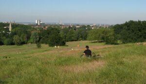 Hampstead Heath in summer