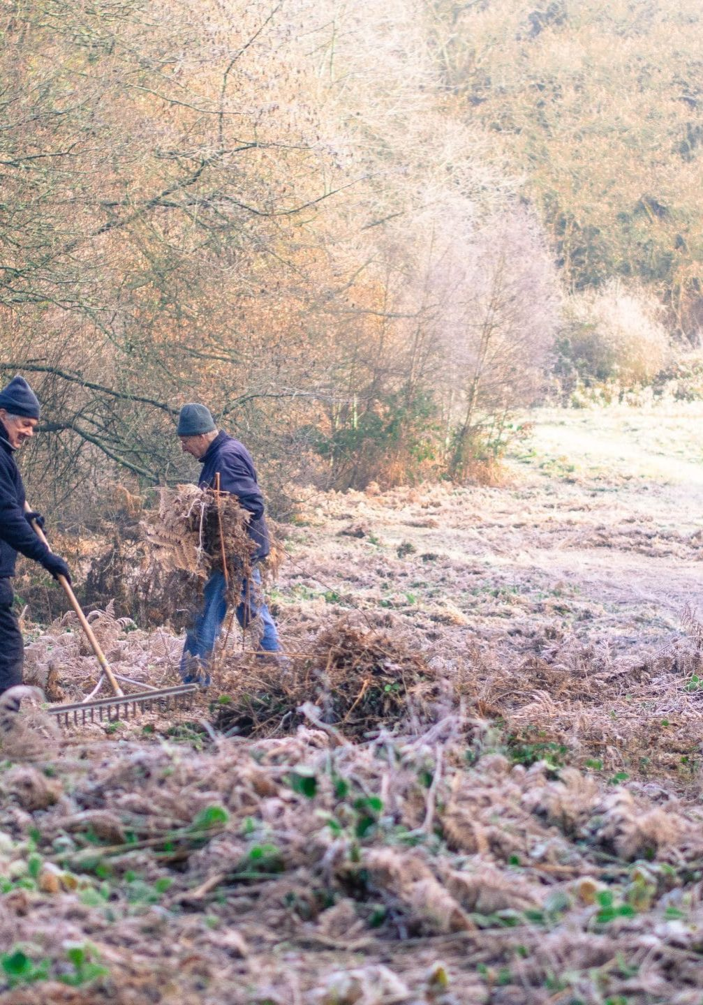 Volunteer work-party on Peppard Common, Oxon. Photo: Clive Ormonde