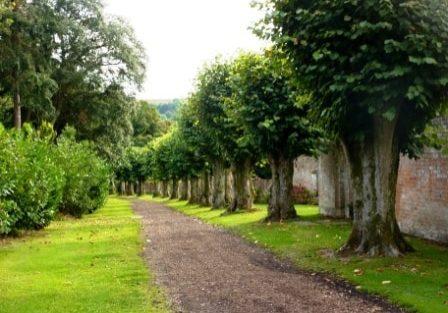 The path through Andrew Lloyd Webber's hamlet of Sydmonton, Hampshire. Photo: Dave Ramm